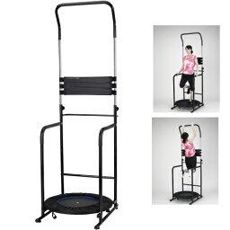 アルインコ 懸垂 器具 バランスウォーク EX8017 健康器具 懸垂マシン 自宅 懸垂 マシーン 足 <strong>ぶら下がり健康器具</strong>