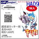 Ha09_w300