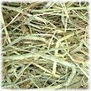 北海道チモシー 1番刈り 500g×2個 牧草