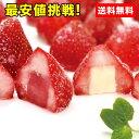 ショッピングアイスクリーム 【送料無料】【九州県産いちご使用】和(なごみ)苺あいす 2種 20個入