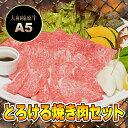 とろける 焼肉セット 黒毛和牛 焼肉 竹コース+追加オプション 900g (カル