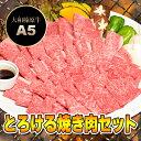 とろける 焼肉セット 黒毛和牛 焼肉 松コース+追加オプション 1.25kg (