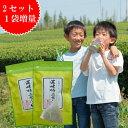 【2セットご購入で1袋増量】緑茶 ティーバッグ 送料無料 日本茶 水出し茶 濃味特上ティーパック 15個入×2袋 ティーパック お茶 八女茶 粉茶 店頭受取対応商品
