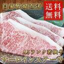 【送料無料】A5ランク若狭牛・サーロインステーキ 500g ★福井が誇る最高級の黒毛和牛