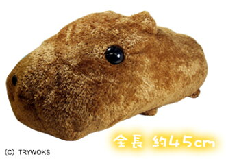 Most popular products! ☆ even whiffing capybara's plush ☆ hugged size ★ kapibara-San