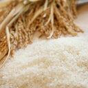 【キャッシュレス5%還元対象】【送料込】ミルキークイーン農匠米5kg(H30年産)