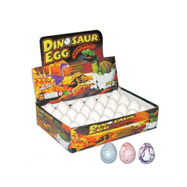 恐竜 おもちゃ タマゴ ミニ フィギュア 水に入れて育てる恐竜 直径4.5cm 高さ6cm 玩具 恐竜のたまご タマゴ 卵 子供_
