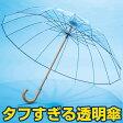 ホワイトローズ 透明フィルム傘II【カテール 16 グラスファイバー 風に強い 強風 折れない 16本骨 傘 ゲリラ豪雨 ビニール傘】【送料無料】 10P01Oct16