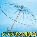 ホワイトローズ 透明フィルム傘II【カテール 16 グラスファイバー 風に強い 強風 折れない 16