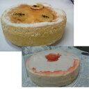 ショッピング正月 [お買い得2ホール][半生 赤いレアーチーズケーキ]と[蒸し芋チーズケーキのセット]/低カロリー/長時間蒸し焼き/レアーチーズケーキ/ニンジン/2種類ののチーズ/アッサリ/シットリ/冷蔵3日お正月手土産/クリスマスプレゼント