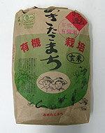 【平成28年産】 井手さんのお米 芽吹き小町(籾発芽玄米)30kg ※5kg×6袋でのお届けとなります