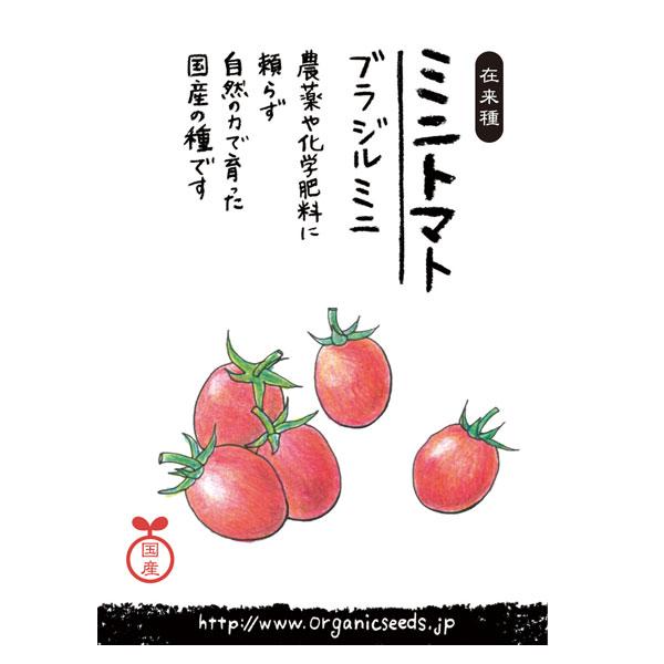 ナチュラルライフステーション 国産・自然農法種子 ブラジルミニトマト 約30粒【8%OFF】