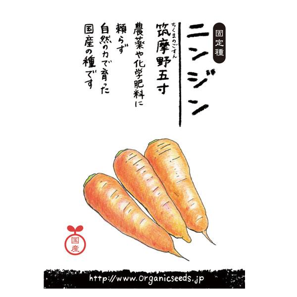 ナチュラルライフステーション 国産・自然農法種子 筑摩野五寸ニンジン 約880粒【8%OFF】