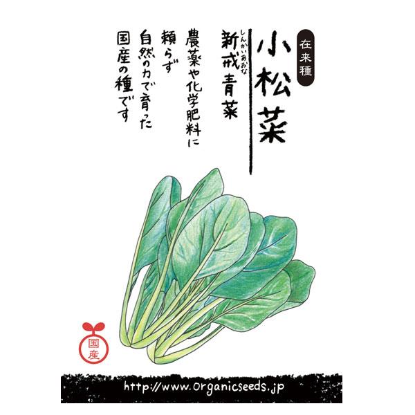 ナチュラルライフステーション 国産・自然農法種子 小松菜/新戒青菜 約580粒【8%OFF】