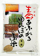 "2004 25 Annual ""field, full of life's rice paddies ' brown rice 4 kg"