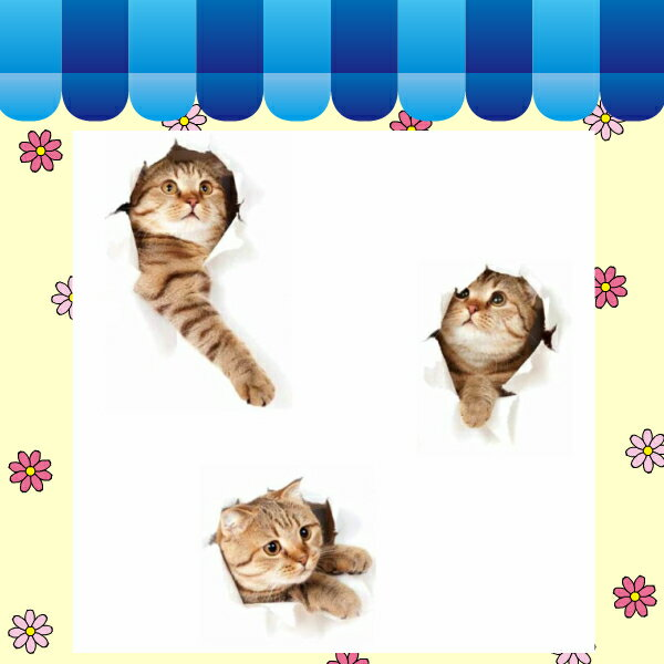【ウォールステッカー】 猫 ねこ 黒猫 三毛猫 ネコ 動物 アニマル かわいい 3d シール トリックアート 壁穴 写真 だまし絵 cat 小さめ インテリアステッカー 壁紙 木 ツリー 1000 ドア フスマ 文字 子猫 アジアン 和室 壁の穴 補修 棚 和風 サイズ 天井 騙し絵 3匹 顔 ミニ