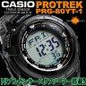 カシオ メンズ腕時計 PROTREK PRG-80YT-1 CASIO 送料無料
