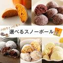 タイムセール 5種類から選べる スイーツ チョコレート バニラビーンズ 選べるスノーボ