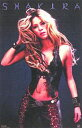 シャキーラ ポスター SHAKIRA USサイズ 洋楽 音楽 music レゲエ レゲトン グラミー グラミー賞 Shakira ラテン ポップ Reggae ワールドカップ 人気 歌手 女性 アーティスト ヒット インテリア
