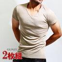 送料無料2枚組み GUNZE(グンゼ)YGベージュのインナーtシャツ(vネック2枚セット)透けにくいベージュ 肌着 メンズ(YV0115)半袖V首