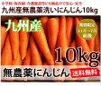 ショッピングわけあり 【送料無料】洗いフルーツにんじん10kg【九州産】 【ちょっとわけあり 無農薬】