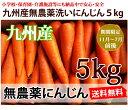 【送料無料】洗いフルーツにんじん5kg【九州産】【ちょっとわけあり】