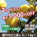 瀬戸内大三島のレモン(1kg)|国産レモン|無農薬|送料無料|楽天クーポン割引対象|佐川急便配送|売