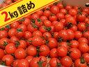 糖度8%の甘〜いトマト(キャロルセブン)2kg 夏季限定クール便【1月~6月頃】