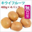 山梨県産 キウイフルーツ 無農薬栽培 400g×4パック