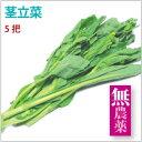 【茎立菜5把】山形県産無農薬栽培。【送料無料】