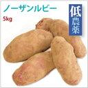 【ノーザンルビー/じゃがいも5kg】北海道産低農薬栽培。【送料無料】