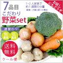【7品目こだわり野菜セット】少人数・お試し向け【送料無料】10P03Dec16