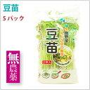 サラダコスモ 豆苗 長野県産 農薬・化学肥料不使用 5パック
