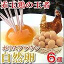 赤玉の王様自然卵『ボリスブラウン自然卵』6個入