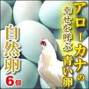 幸福をもたらすアローカナの青い卵6個入もちろん平飼い・自然卵!