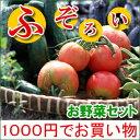 【訳あり規格外旬野菜1000円セット全6種でお届け】1日限定20セットまで・1人4セットまで