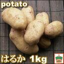 ショッピング契約 【じゃがいも】【生でも食べられる!】ステビア農産物じゃがいも『はるか』2S〜2Lサイズ混合1kg