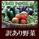 【順次】【訳あり規格外旬野菜1000円セット全4〜5種でお届け】1人1セットのみ!