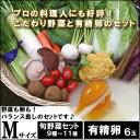旬野菜高級お野菜セット9?11種+放し飼い高級有精卵6個かヨーグル【贈り物・ギフト】