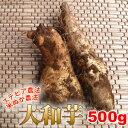 こだわりのステビア・米ぬか農法で作られた大和芋の右に出るモノなし!粘りとコクが自慢!食育素材の大和芋(500g)