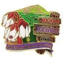 2段 ピンズ ピンバッジ 日本百名山 草津白根山 エイコー コレクションケース入り トレッキング 登