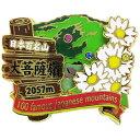 2段 ピンズ ピンバッジ 日本百名山 大菩薩嶺 エイコー コレクションケース入り トレッキング 登山