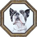 八角 ミニゲル アートフレーム 動物画 エイミー デル バレ バード ウォッチング AD-02551 19.5x19.5cm 犬 ギフト 額付きポスターインテリア 取寄品