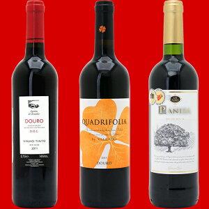 赤ワイン ヴェリタス