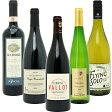 【送料無料】 赤ワイン 白ワイン ワインセット BIOワイン極上赤白5本セット(赤3本+白2本)≪第37弾≫【wineday】^W02I37SE^