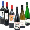 ワイン ギフト 送料無料 美味しいものだけ6本(赤4本+白2本) ワインセット≪第98弾≫ 金賞 赤