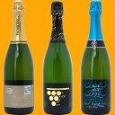 ワインセット【送料無料】スパークリングワインすべて本格シャンパン製法の豪華泡3本セット≪第99弾≫ワインギフトwinegift^W0GR17SE^