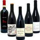 6 ワインセット 【送料無料】BIOワイン極上赤だけ5本セット≪第44弾≫ ワイン ギフト wine gift チラシ6 W03I44SE