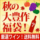 【S9】秋の大豊作福袋【送料無料】品質評価の高いシャンパン5本セット!(泡5本)^W0SH09SE^