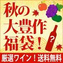 【S20】秋の大豊作福袋【送料無料】「有名メゾン」シャンパン4本セット!(泡4本)^W0SH20SE^
